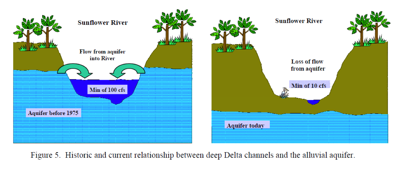 Sunflower River - flow from aquifer into River