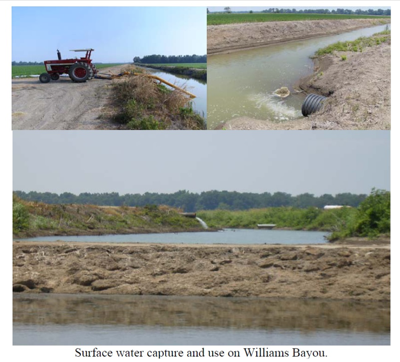 Surface water capture and use on William's Bayou