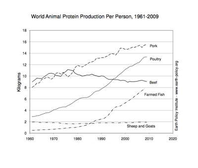 World Animal Protein Production Per Person, 1961-2009. Courtesy of the Earth Policy Institute.