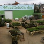 Miss Del's Garden from above. Grand Opening Friday, April 1. Photo by The DB
