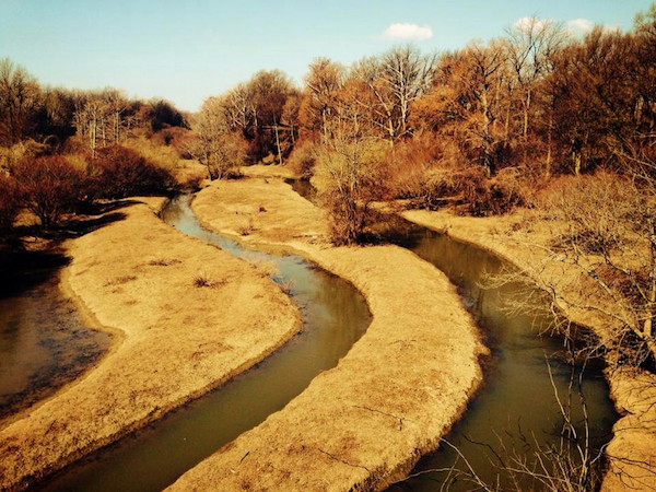 Sunflower River - Photo by Poor William