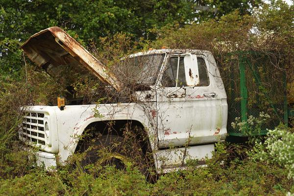 Chevy Truck - near Webb, Mississippi PHOTO BY DONALD CHRISTIAN