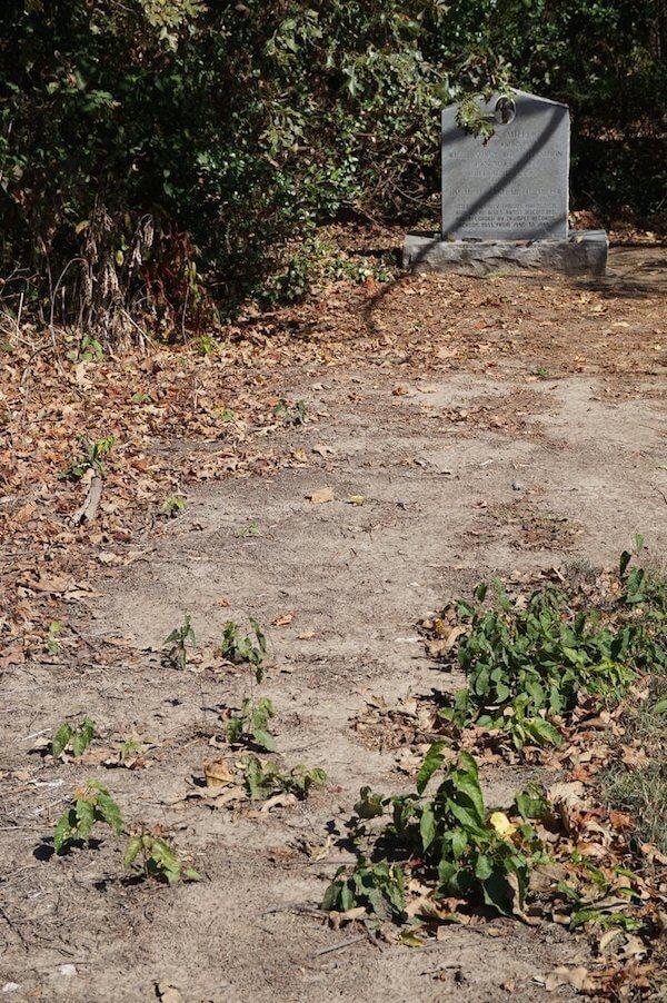 Tutwiler Cemetery grave of Sonny Boy Williamson ll seen on Delta Bohemian Tour. Photo by Andrea Vlonk
