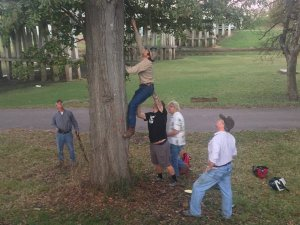 Tree climbing to retrieve disc with group effort