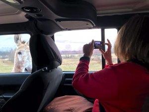 Felicia enjoying all the Delta wildlife on her Delta Bohemian Tour